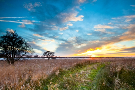 Camino rural a través de campo de hierba en Lakeside durante la puesta del sol