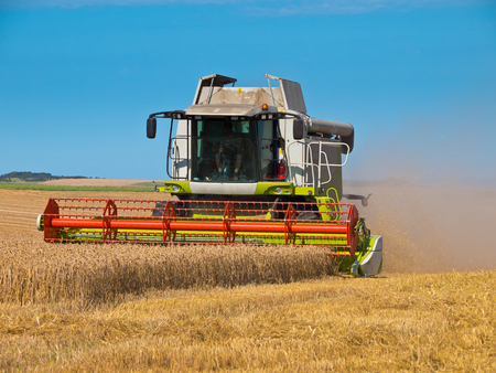green red working harvesting combine in the field of wheat photo