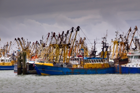 fishingboat: Fishing boats are waiting for the weather to clear up in a dutch harbor