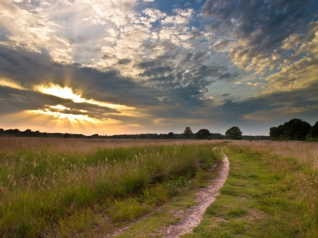 heathland: Spectacular Sunset over Trail in Natural Heathland in The Netherlands