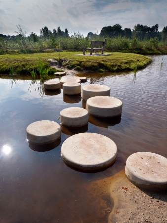 succesful: Stepping Stones in Water of a Pond