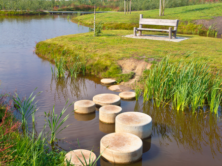 Stepping Stones in Water of a Pond photo