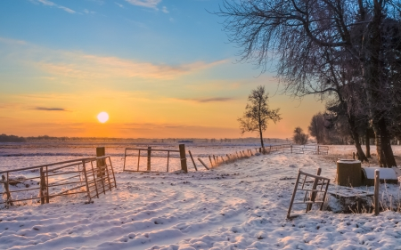 Gates and Fences in Winter Landscape with Snowy Fields and Blue Sky in Drenthe Netherlands photo
