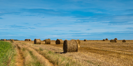 Panoramic view of hay bales in french countryside along a track photo