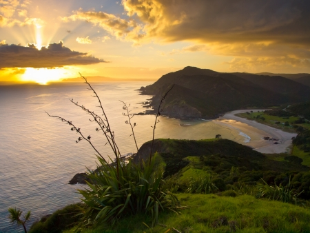 reinga: Sunrise Above the Pacific Ocean seen from Cape Reinga, North Island, New Zealand