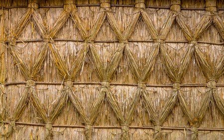 thatched house: Thatched