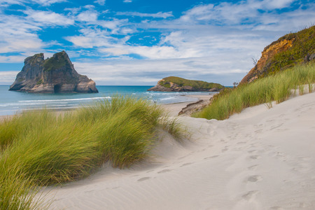 nelson: Sand Dunes and Grass Vegetation at Famous Wharariki Beach,