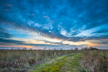 grassy field: Rural Trail through Grassy Field on Lakeside during Sunset leading to Heaven