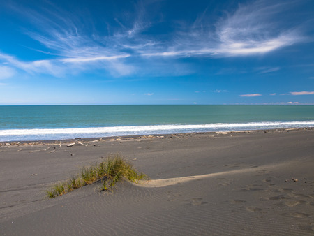 new zealand beach: Beach and Dunes near Mt. Egmond, North Island New Zealand