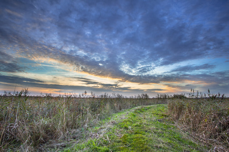 personal god: Rural Trail through Grassy Field on Lakeside during Sunset leading to Heaven