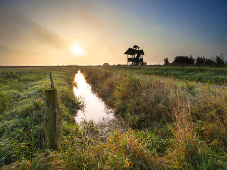 holland landscape: Dutch Polder Landscape on Foggy Morning with Wildlife Observation Tower