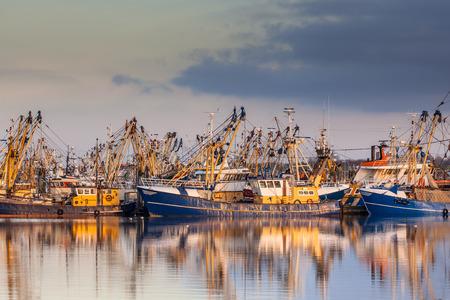Lauwersoog alberga una de las mayores flotas pesqueras de los Países Bajos. La pesquería se concentra principalmente en la captura de mejillones, ostras, camarones y peces planos en el Mar de Wadden Foto de archivo