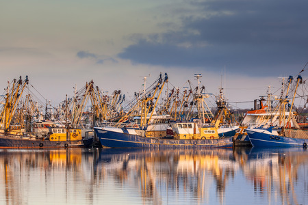 Lauwersoog harbours one of the biggest fishing fleets of the Netherlands. The fishery concentrates mainly on the catch of mussels, oysters, shrimp and flatfish in the Waddensea Stockfoto
