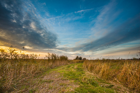 personal growth: Rural Trail through Grassy Field on Lakeside during Sunset leading to Heaven