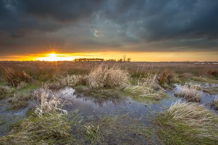 Leekstermeer 上空の差し迫った曇った自然地域が殺到。この場所は、水を保存するメンターです。