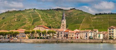 rhone: Panorama of Tournon sur Rhone river town and Vineyards on the Hills of the Cote du Rhone Area in France