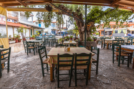 Traditional village eatery terrace with wooden tables and chairs under a huge tree