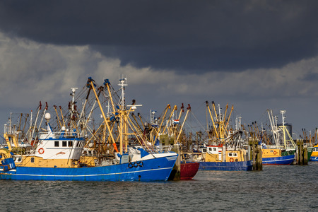 fischerei: Lauwersoog beherbergt eine der größten kommerziellen Fangflotten in den Niederlanden. Die Fischerei in erster Linie konzentriert sich auf den Fang von Muscheln, Austern, Garnelen und Plattfisch im Wattenmeer