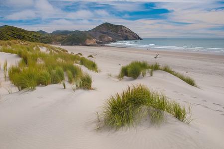 砂丘や美しい Wharariki ビーチで草植生 写真素材