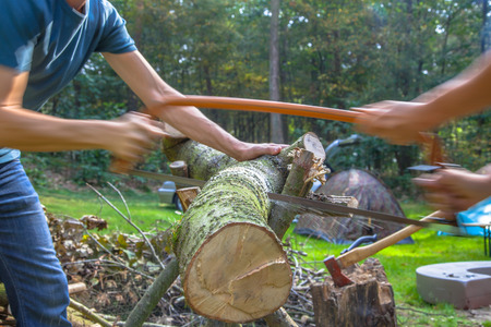 campsite: Firewood sawing on a sunny campsite with tents and axe in the background Stock Photo