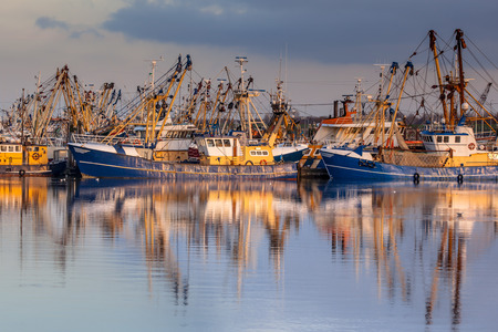 concentrates: Lauwersoog hosts one of the biggest fishing fleets in the Netherlands. The fishery concentrates mainly on the catch of mussels, oysters, shrimp and flatfish in the Waddensea Stock Photo