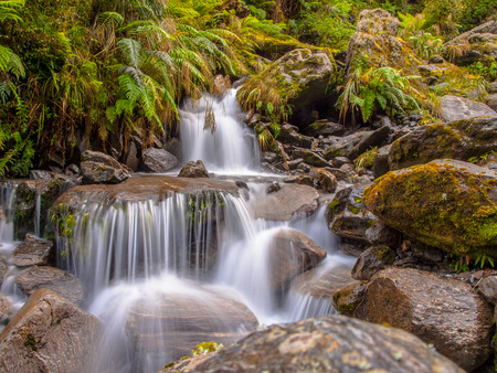 waterfall in the forest: Rainforest waterfall long exposure image in lush tropical forest