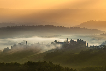 toskana: Cypress on the Hills of Tuscany on a Foggy morning