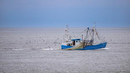 pesca: Barco de pesca en el waddensea, parte de la flota pesquera holandés tradicional