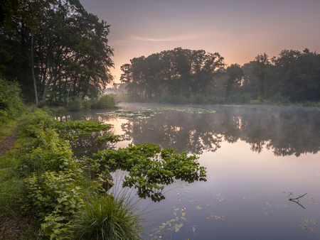 Spring lake in Natura 2000 Nature reserve Springendal on a foggy morning in August 스톡 콘텐츠