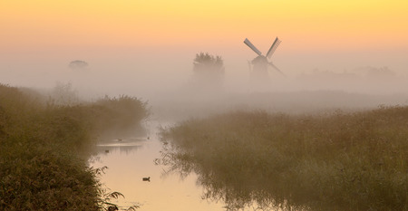 wetland: Traditional dutch Windmill in a wetland area on a foggy morning in september