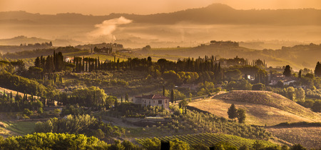 val dorcia: Cypress on the Hills of Tuscany on a Foggy morning in August Stock Photo