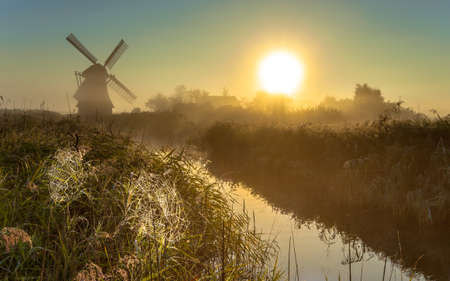 cobwebs: Traditional dutch Windmill in a marshland area with cobwebs in reed on a foggy morning in september