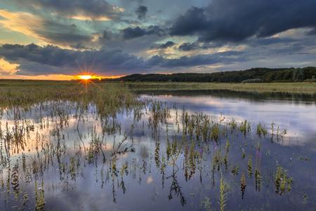 floodplain: Dark landscape of river foreland with heavy clouds in the marshlands of the Rhine near Arnhem, Betuwe, Netherlands Stock Photo
