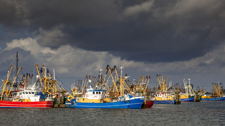 fishery: Lauwersoog hosts one of the largest fishing fleets in the Netherlands. The fishing concentrates mainly on the catch of mussels, oysters, shrimp and flatfish in the Waddensea Stock Photo