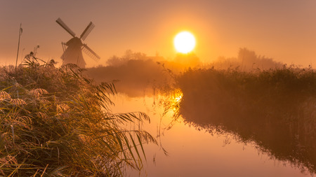 holland windmill: Typical historic windmill in a polder wetland on a cool colored foggy september morning in the Netherlands Stock Photo