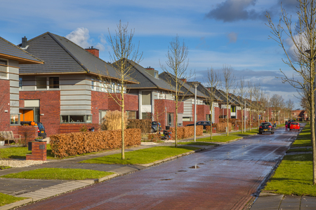 Detached family houses along a suburban street with grass trees and hedges in winter, Groningen, Netherlands