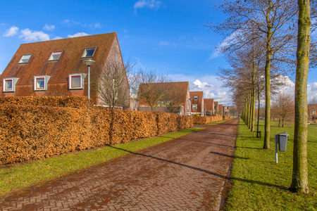 clase media: Large Detached middle class family houses along a natural ecological park in an urban area in winter, Groningen, Netherlands