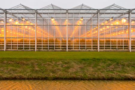 Warmes Licht durch feuchte Glas eines riesigen kommerziellen Gewächshaus