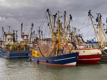 fishingboat: Fishing fleet in the dutch fishing harbor of Lauwersoog Stock Photo