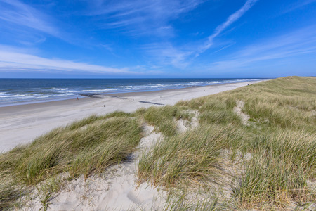 journeying: Peaceful Beach and dunes on Wadden island in the Netherlands
