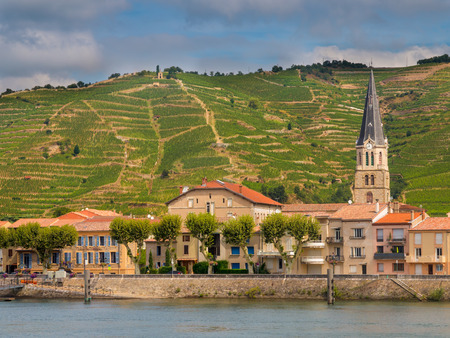 Tournon sur Rhone river town and Vineyards on the Hills of the Cote du Rhone Area in France 免版税图像 - 61253805
