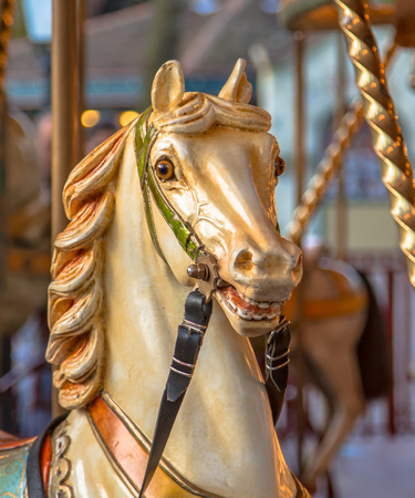 play the old park: Head of horse in a merry go round on a vintage summer funfair. Amusement concept