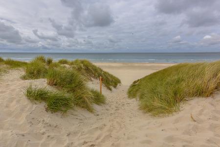 duna: Realizar un seguimiento de throug las dunas de la playa en una isla de Wadden en los Países Bajos Foto de archivo
