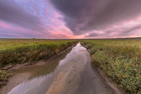 Sunset over tidal creek in tidal wetland at Waddensea, Friesland, Netherlands