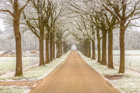 frozen winter: Winter road on the frozen frisian countryside in the Netherlands Stock Photo