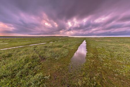 lowlands: Sunset over ditch in tidal marsh flat at Waddensea, Friesland, Netherlands