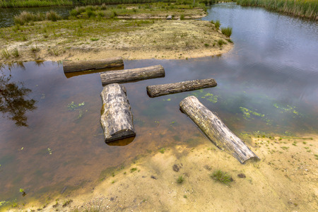 Pattern of Logs as Stepping stones in public pond of park as part of playground for children. Concept for the difficulties disabled people will face in daily life. Stock Photo