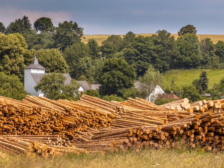 felled: Stacks of Tree Logs at a Lumber Yard in a Rural village Setting in the Eifel, Germany Stock Photo