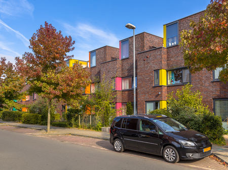 suburban neighborhood: Colorful modern suburban family row houses in a lively proper neighborhood with trees and gardens