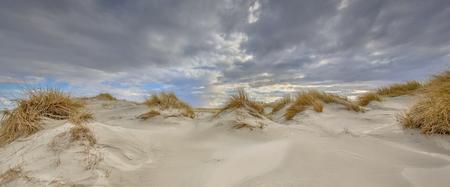 Young coastal Dune landscape on Rottumerplaat island in the Waddensea, Netherlands